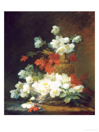 Still Life of Christmas Roses
